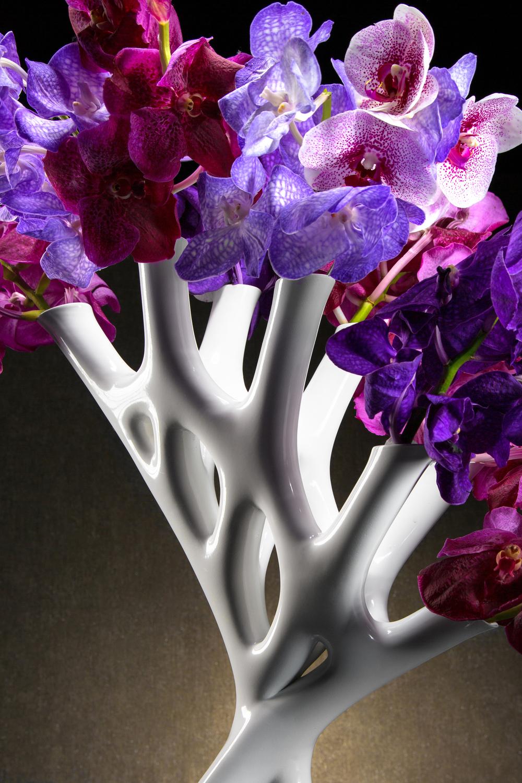 CORAL-07-Floral3.jpg
