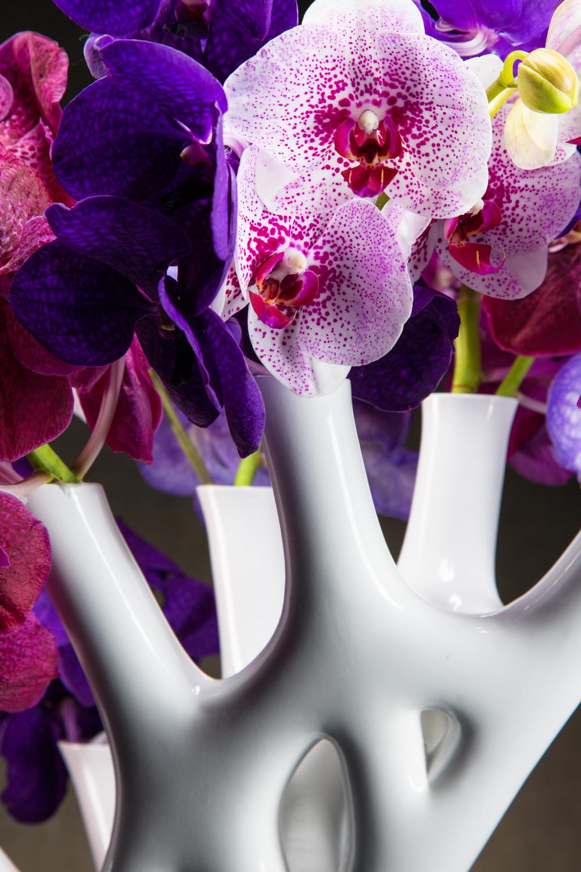 CORAL-10-Floral.jpg