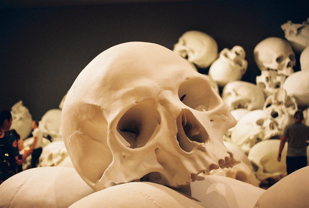 The Skulls. NGV Triennial Melbourne March 2018.Kodak GC UltraMax 400 Color Negative Film 35mm Roll Film.