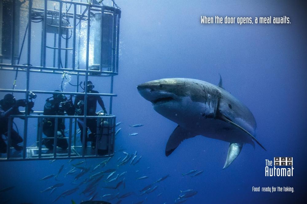 shark_ad(flat) (1).jpg
