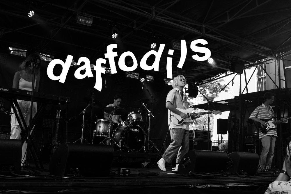 Daffodils-Live-title.jpg