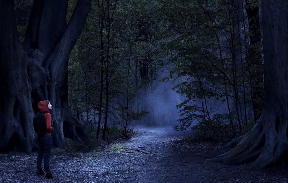 The Woodsmed.jpg