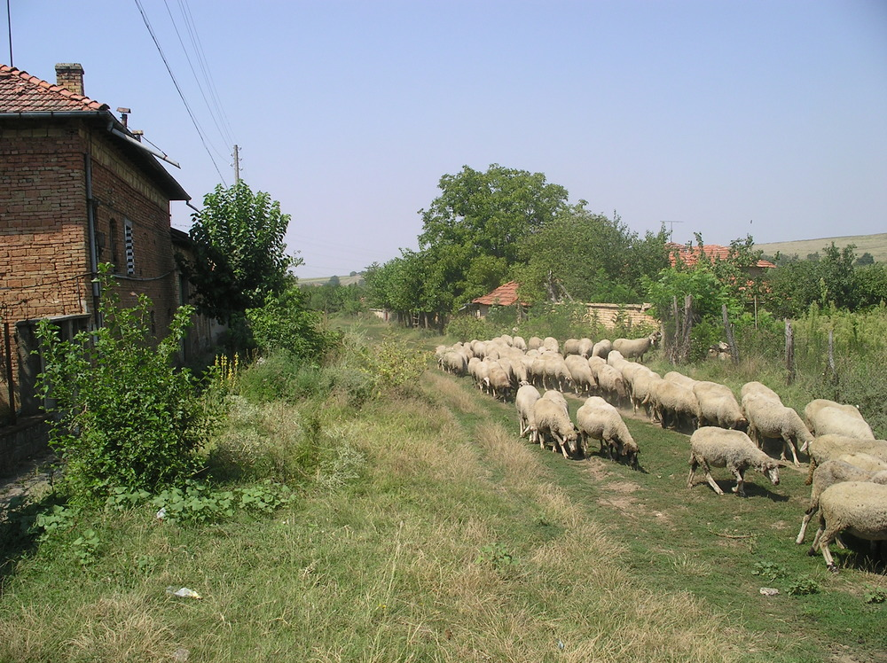 In Bulgarije is na decennia van leegloop 'nonbestemming' de dagelijkse praktijk