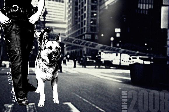 catalog_designer_new_york.jpg