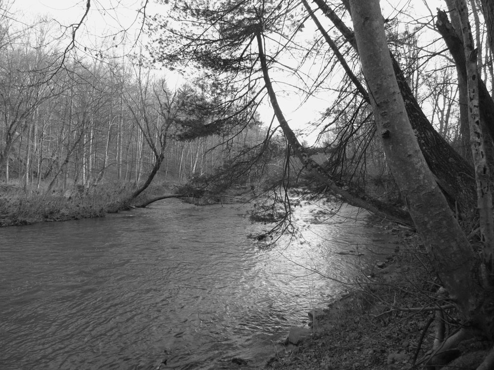 Sleepy Creek, WV December 2012