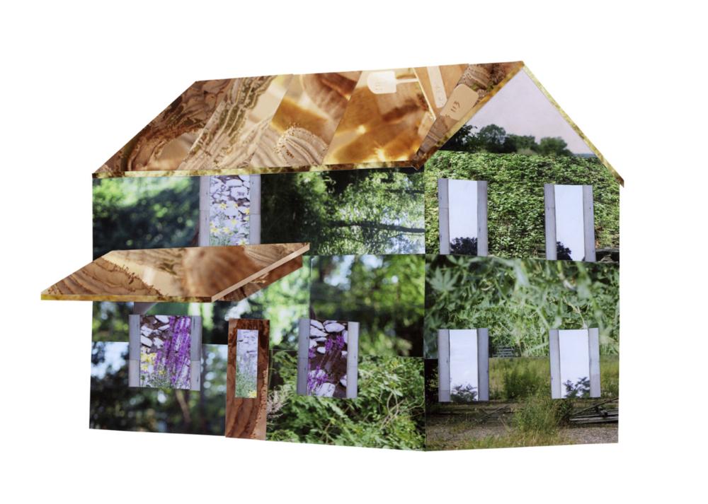 Better Homes And Gardens Liesl Pfeffer