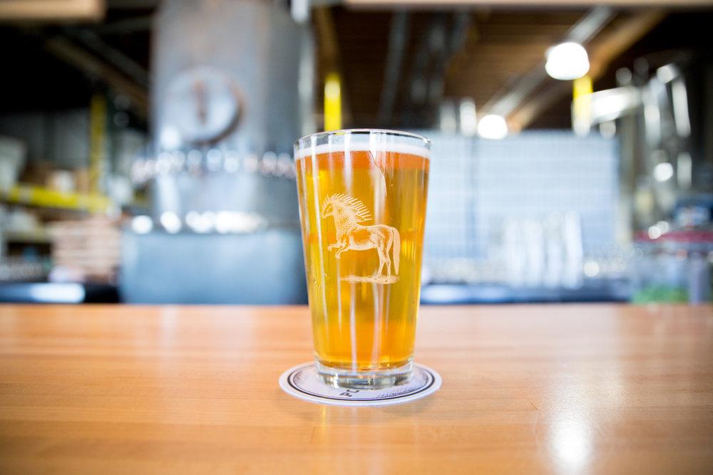 Biere de Garde _ Ponysaurus Brewing Co _ Carolina Kammel.jpg