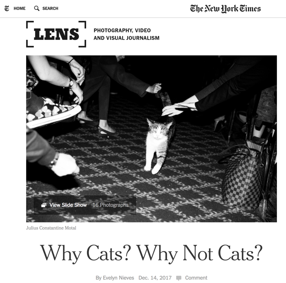 NYTimes Lens - Julius Motal.png