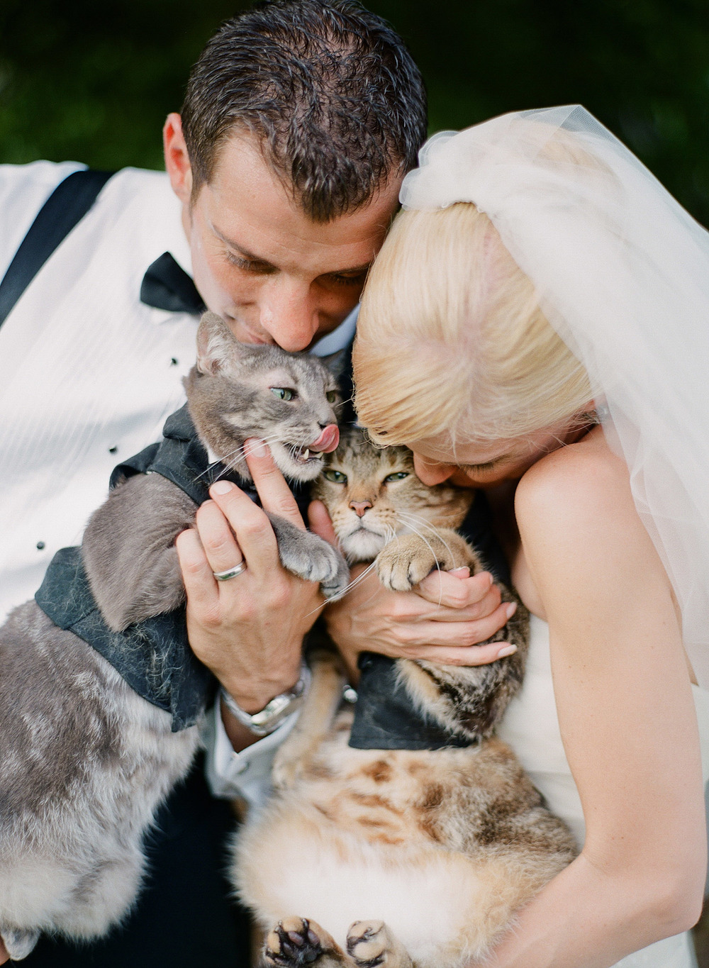 destination wedding photographer, Lexia Frank, photographs this bride and groom with their cats who wore tuxedos to the wedding at the italian destination wedding venue The Villa Terrace