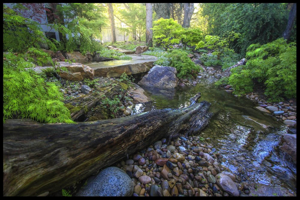 Log stream.jpg