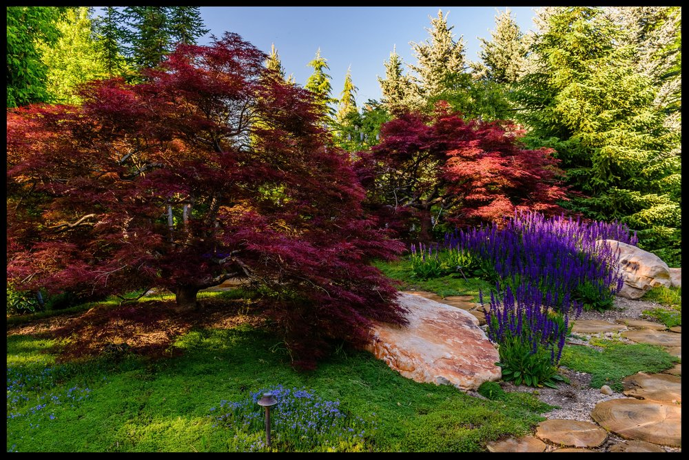 PDM_Legacy Gardens_ (5).jpg