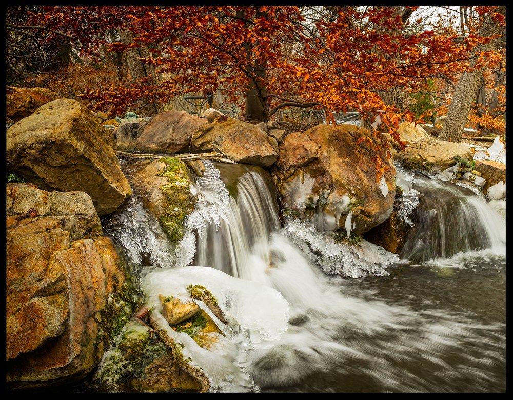 PDM_Legacy Gardens_ (29).jpg