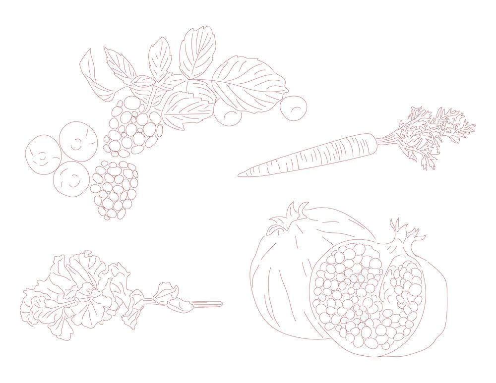 Julia Bergen_Liquid Lab Fruits-01.jpg