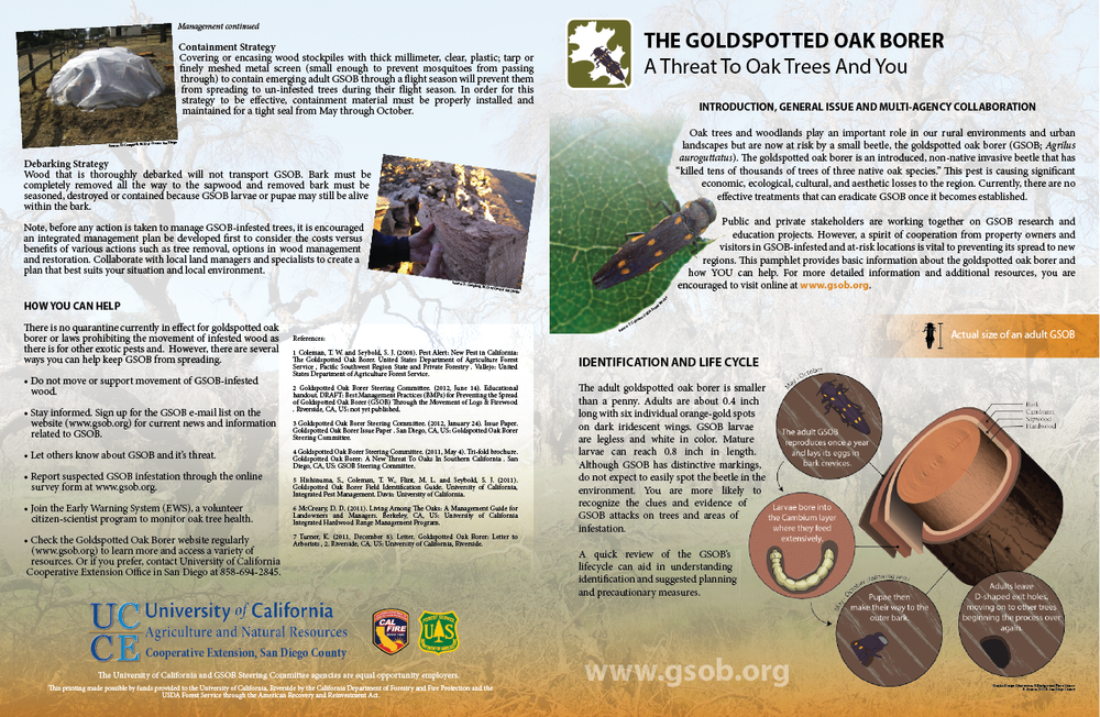 GSOB Info Booklet (11x17)-02.png