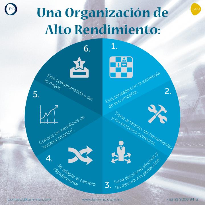 Características de una Organización de Alto Rendimiento
