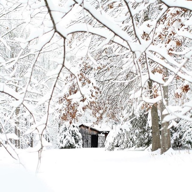 """Ready for a big Kentucky snow""Morehead, Kentucky Photo via Instagrammer @morganravenscraft"
