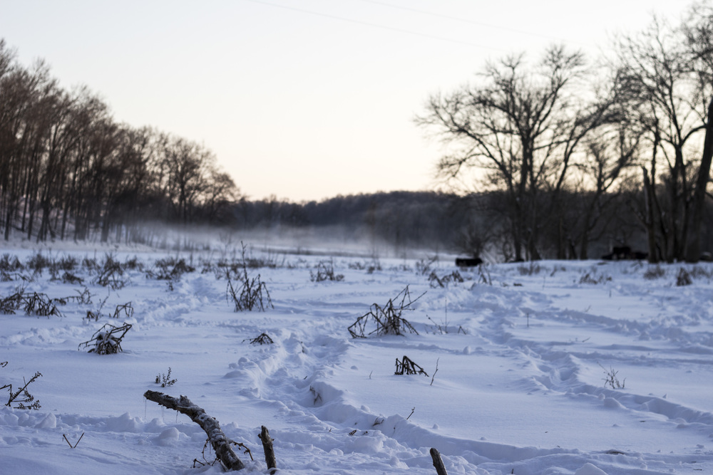 Shot of the farm and river covered in snow. Photo by: Michael Cheser