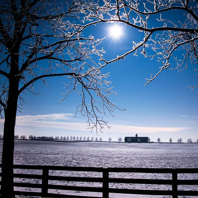 """ The full moon through icy branches above a frozen horse farm in Woodford County early this morning. 5 second exposure. I can officially confirm that it was 10 degrees at 5 AM. ""  Photo via Instagrammer  OS83"