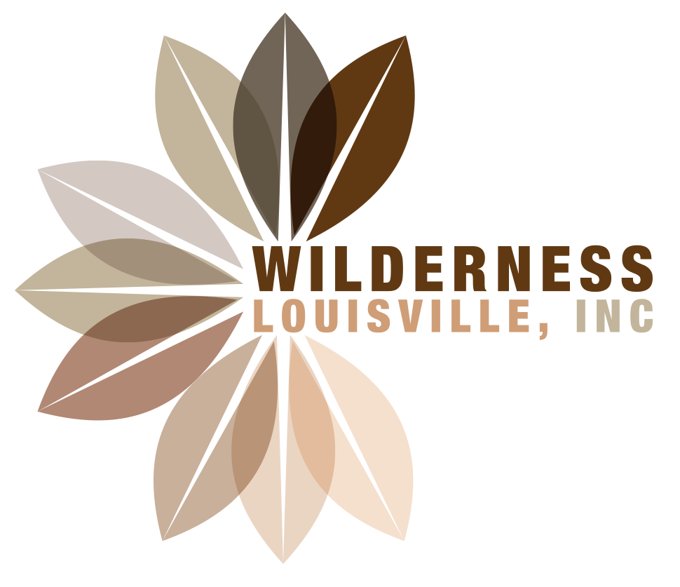Wilderness-Louisville.png