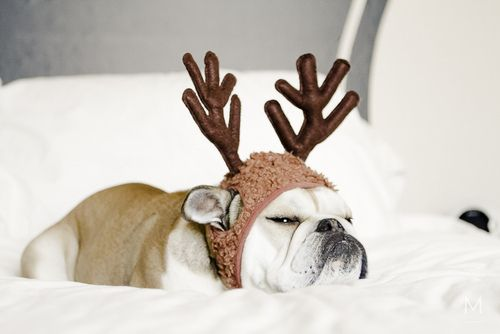 "| ""Very Merry"" post, by MunW blog (www.munw.es). Picture found on Pinterest. 