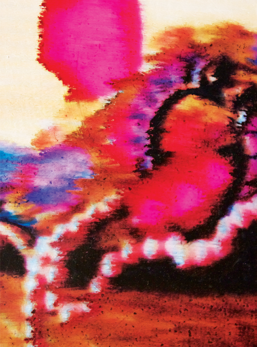 Carpet (detail), 2012 Acrylic and inkjet on paper 22 x 30 inches