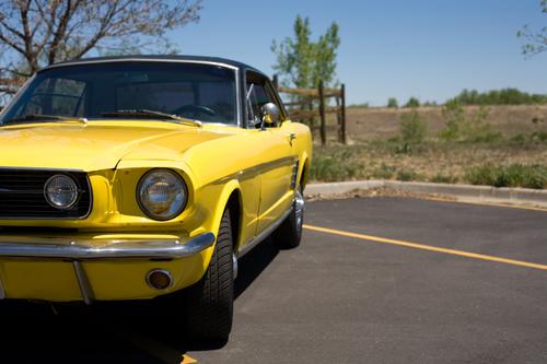 Summertime-Car.jpg