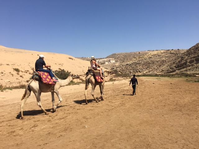 camel-trekking.jpg