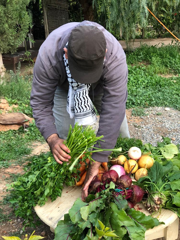 khalid-bbio-organic-farm.jpg