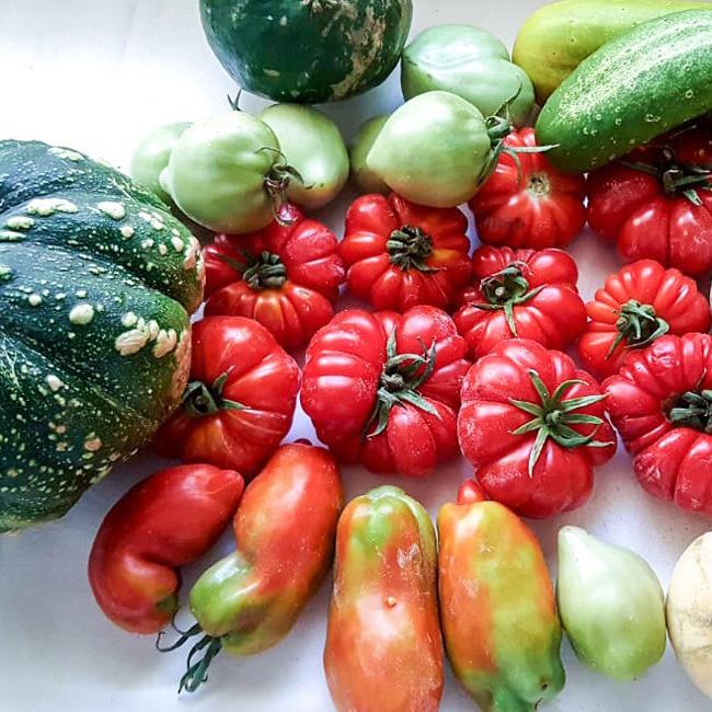 bbio-farm-produce.jpg