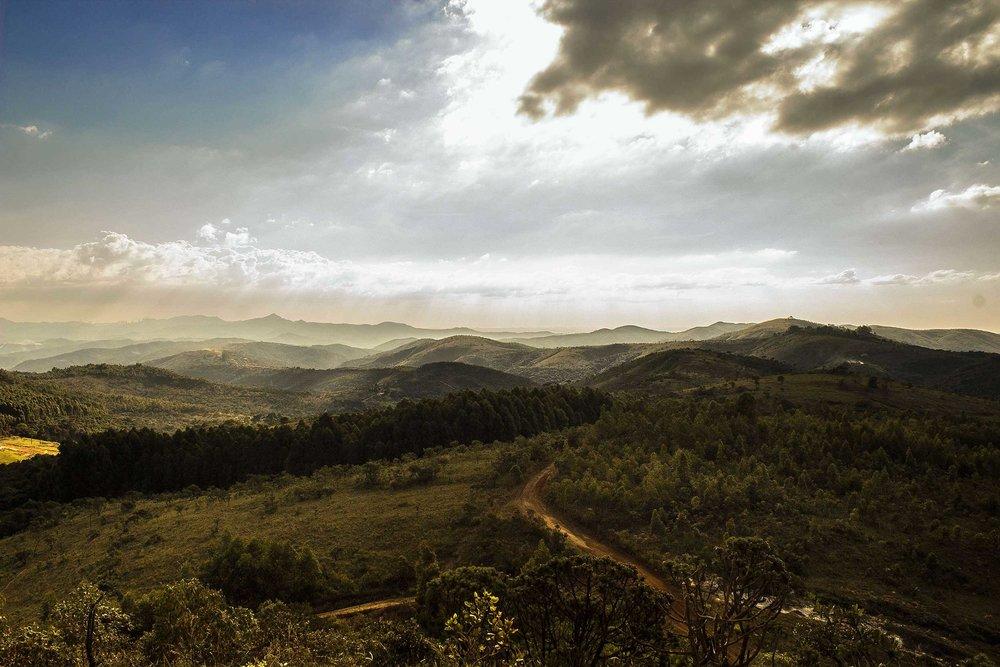 landscape-2500.jpg