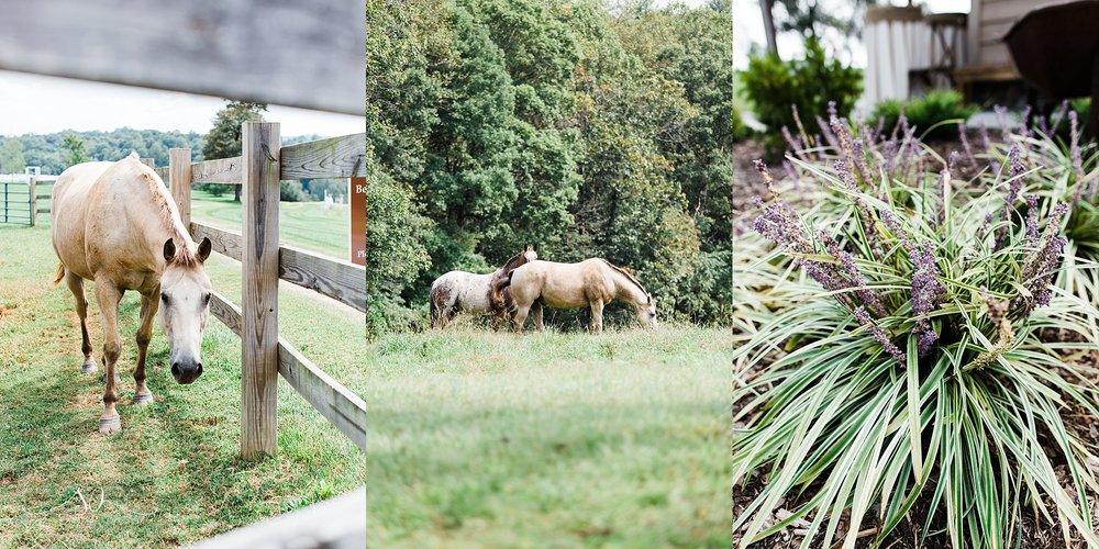 Gambill Estate North Carolina Wedding Photographer (4).jpg