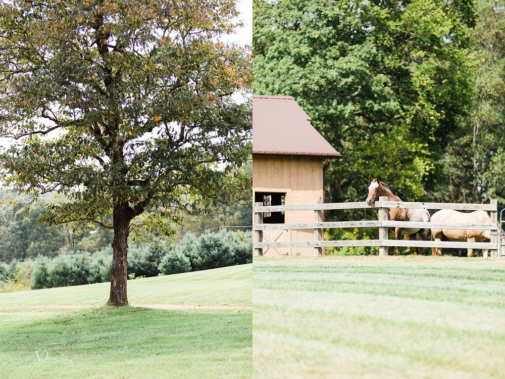 Gambill Estate North Carolina Wedding Photographer (20).jpg