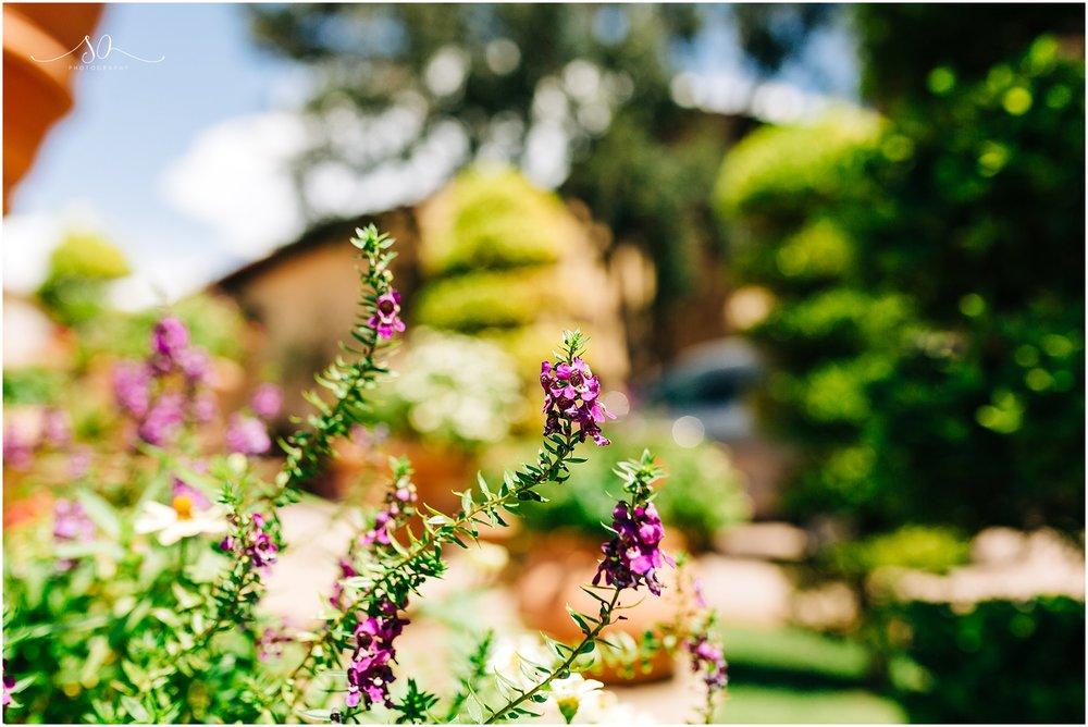 bella collina monteverde wedding_0002.jpg
