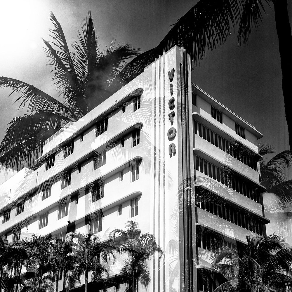 "Victory Palms  12""x12"" Black & White C-Print - $200 - Edition of 25 24""x24"" Black & White C-Print - $500 - Edition of 20"