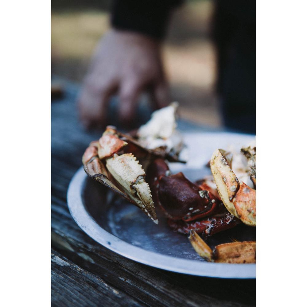 crab-22.jpg