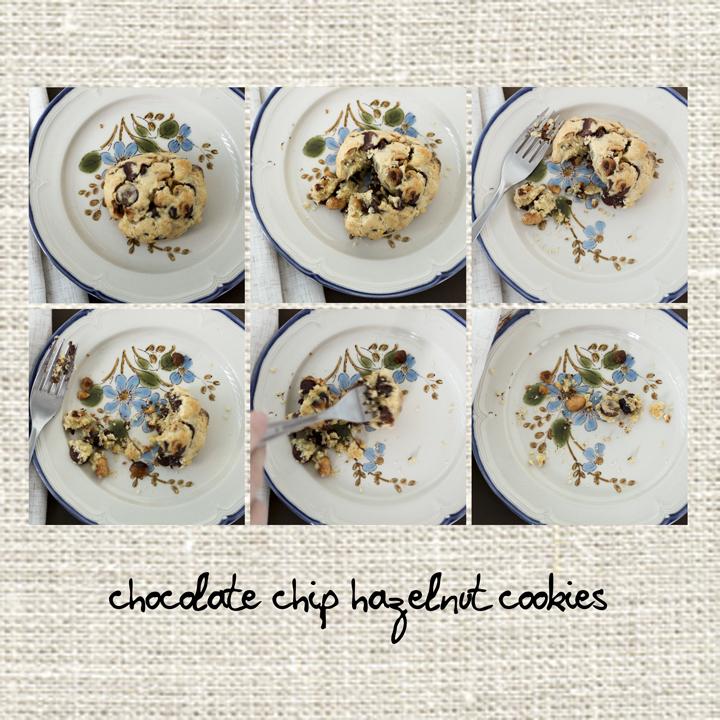 chocolatehazelnutcookies.web.jpg