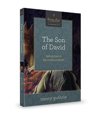 The Son of David Book