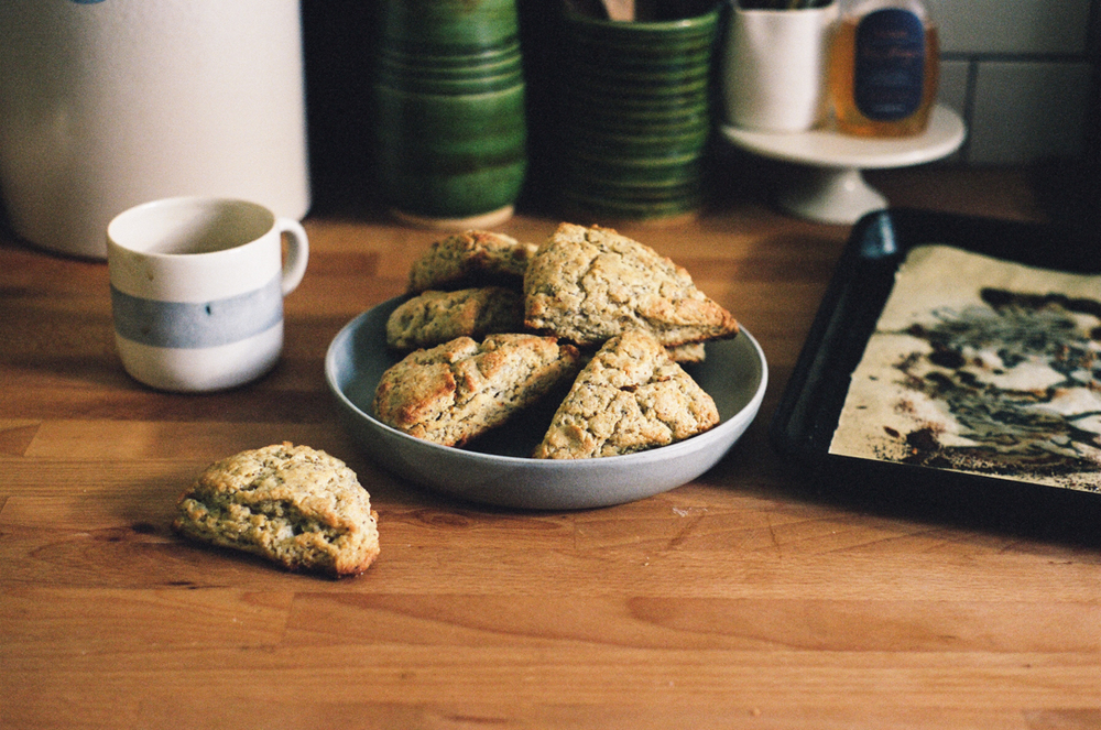 tangerine poppyseed scones (apt 2b baking co)