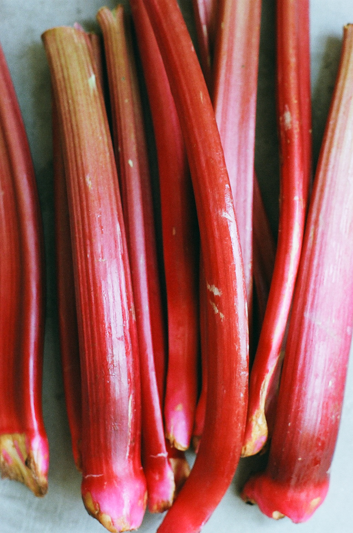 rhubarb (yossy arefi)