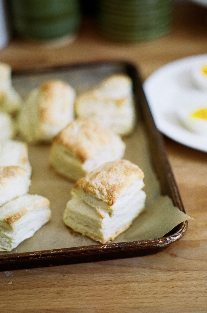 flaky ricotta biscuits (yossy arefi)