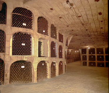 BritWit Largest Wine Collection