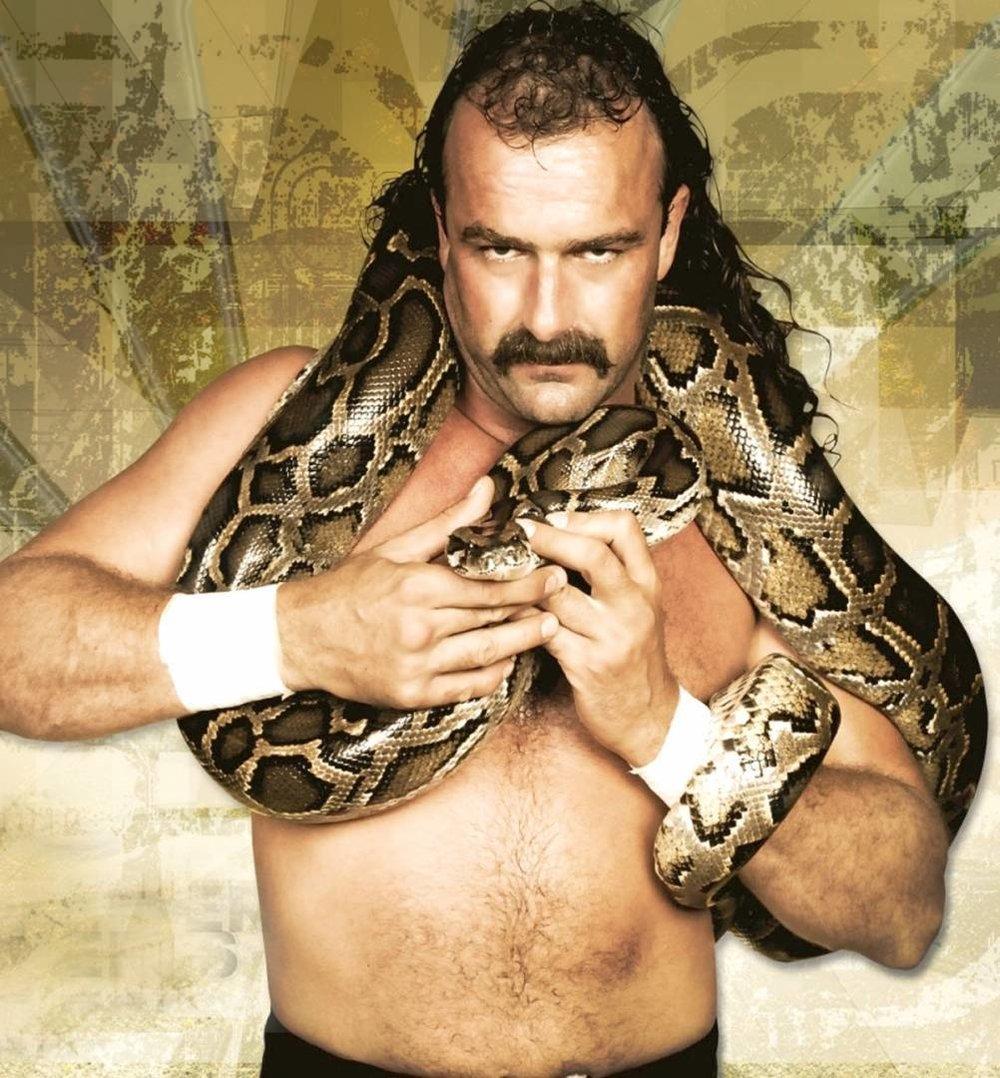 Jake the Snake.jpg