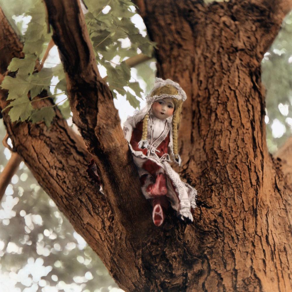 Heidi in a Tree