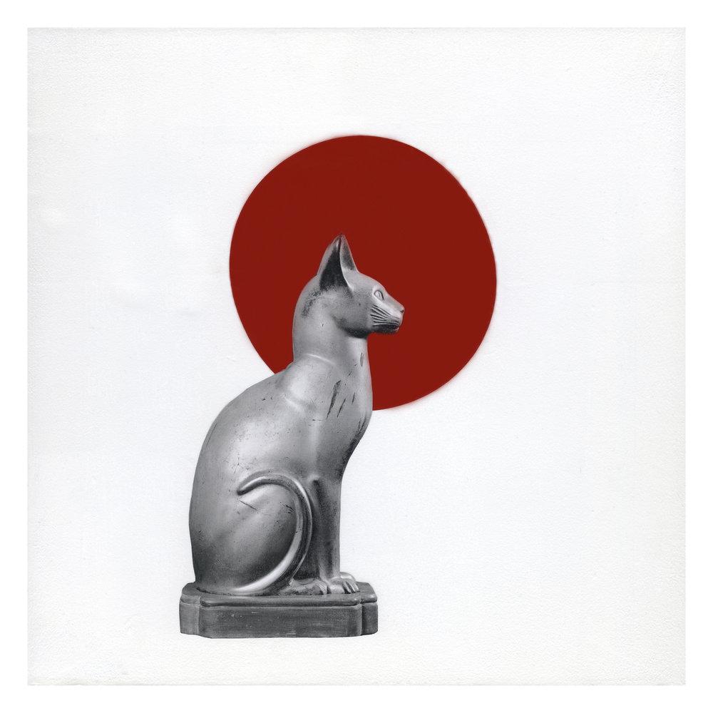 Tokyo Cat