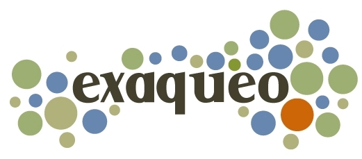 exaqueo - an employer brand experience firm
