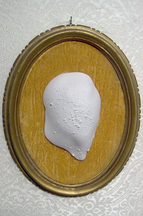 spécimen portrait I (2009)