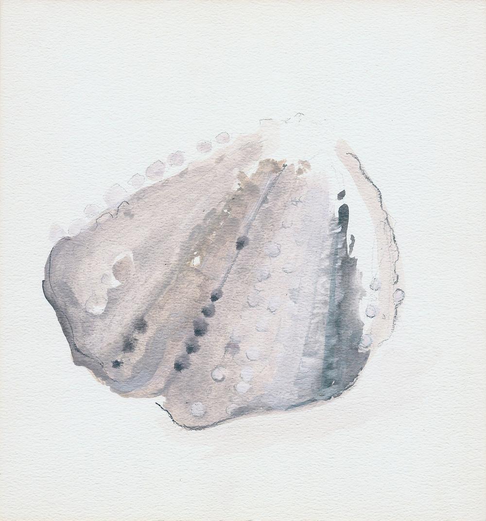 coquillage I (2011)