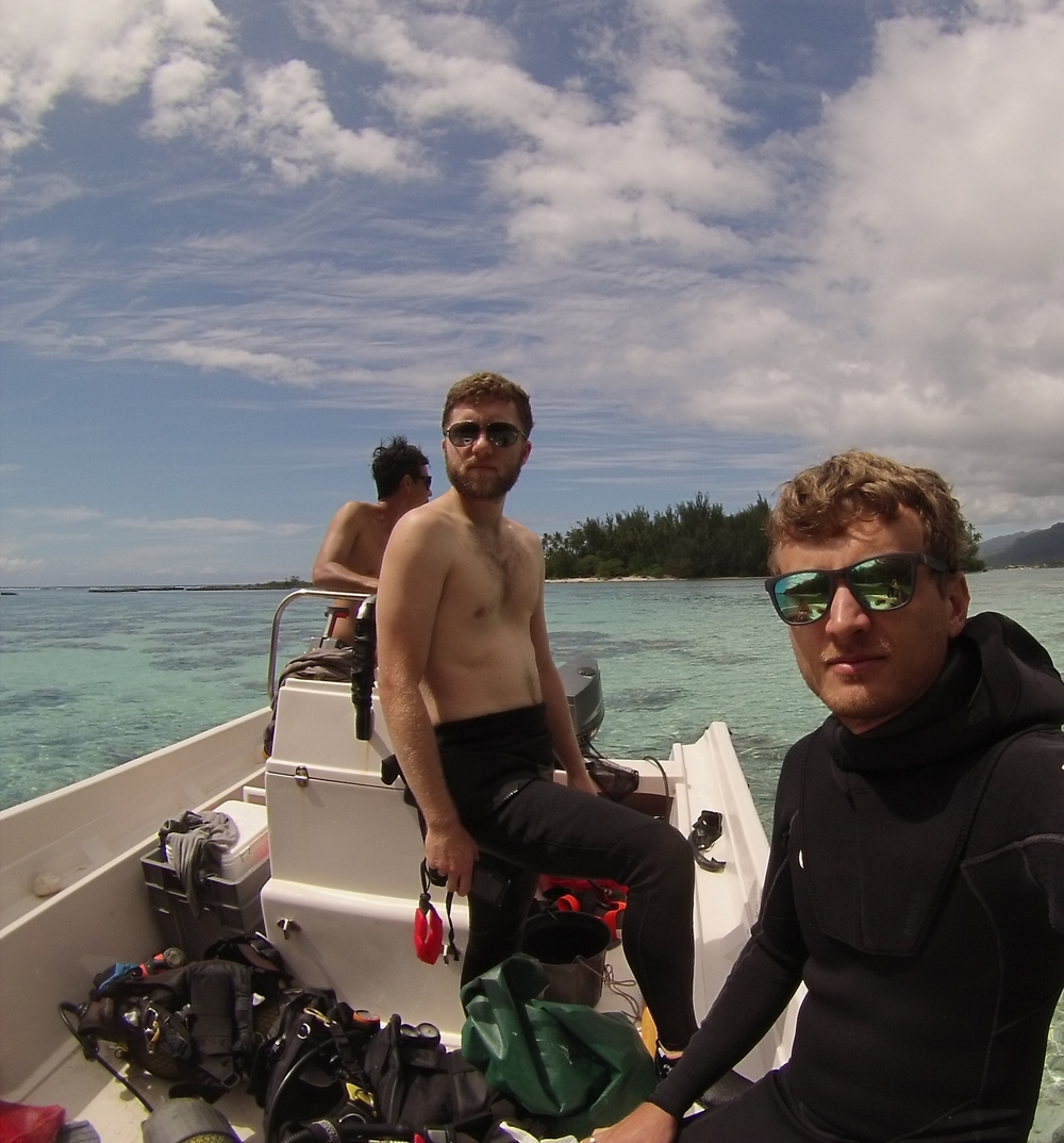Surveying the reefs of Moorea with Cole Easson