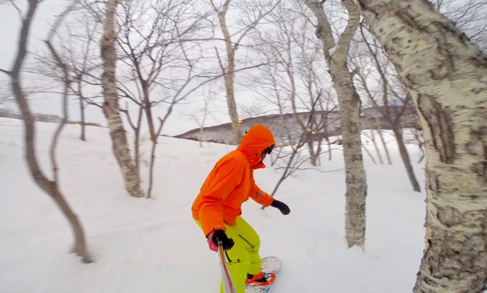 pure brandz guy snowboarding niseko trees.png