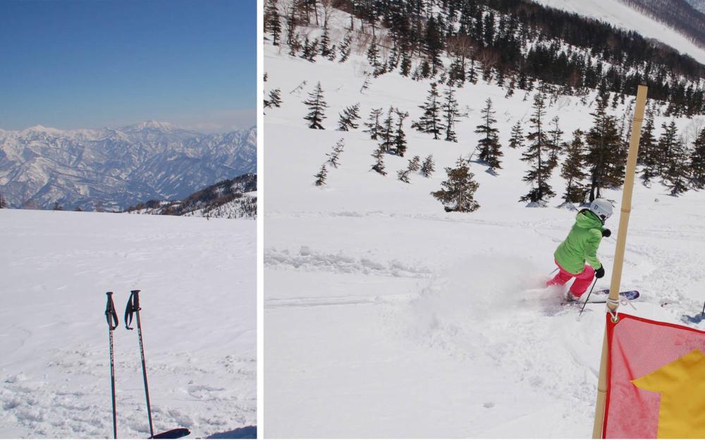 pure brandz hakuba heli skiing